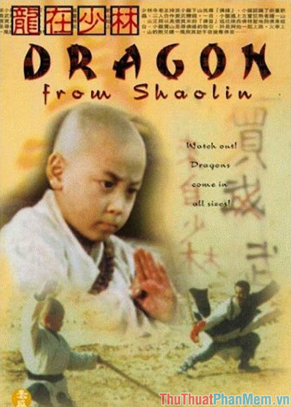 Dragon from Shaolin – Rồng thiếu lâm (1996)