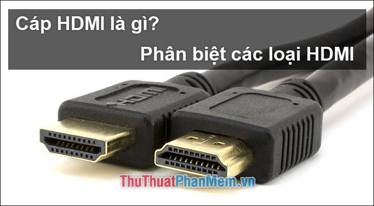 Cáp HDMI là gì? Có bao nhiêu loại cáp HDMI? Sự giống và khác nhau giữa chúng