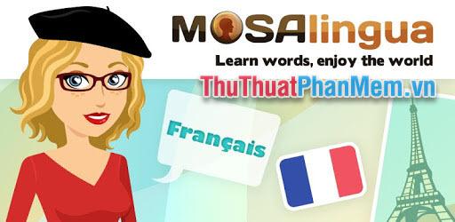 Mosalingua French