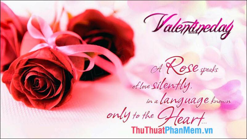 Những hình ảnh Valentine đẹp, lãng mạn và dễ thương nhất - 3