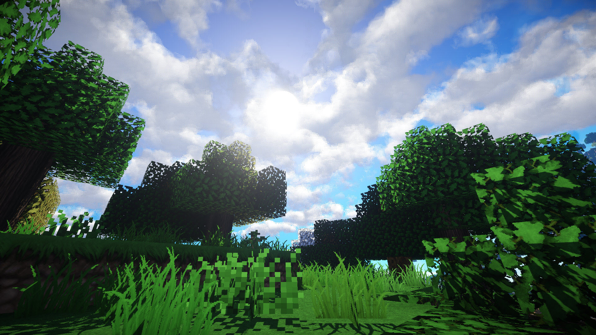 Minecraft wallpaper natural