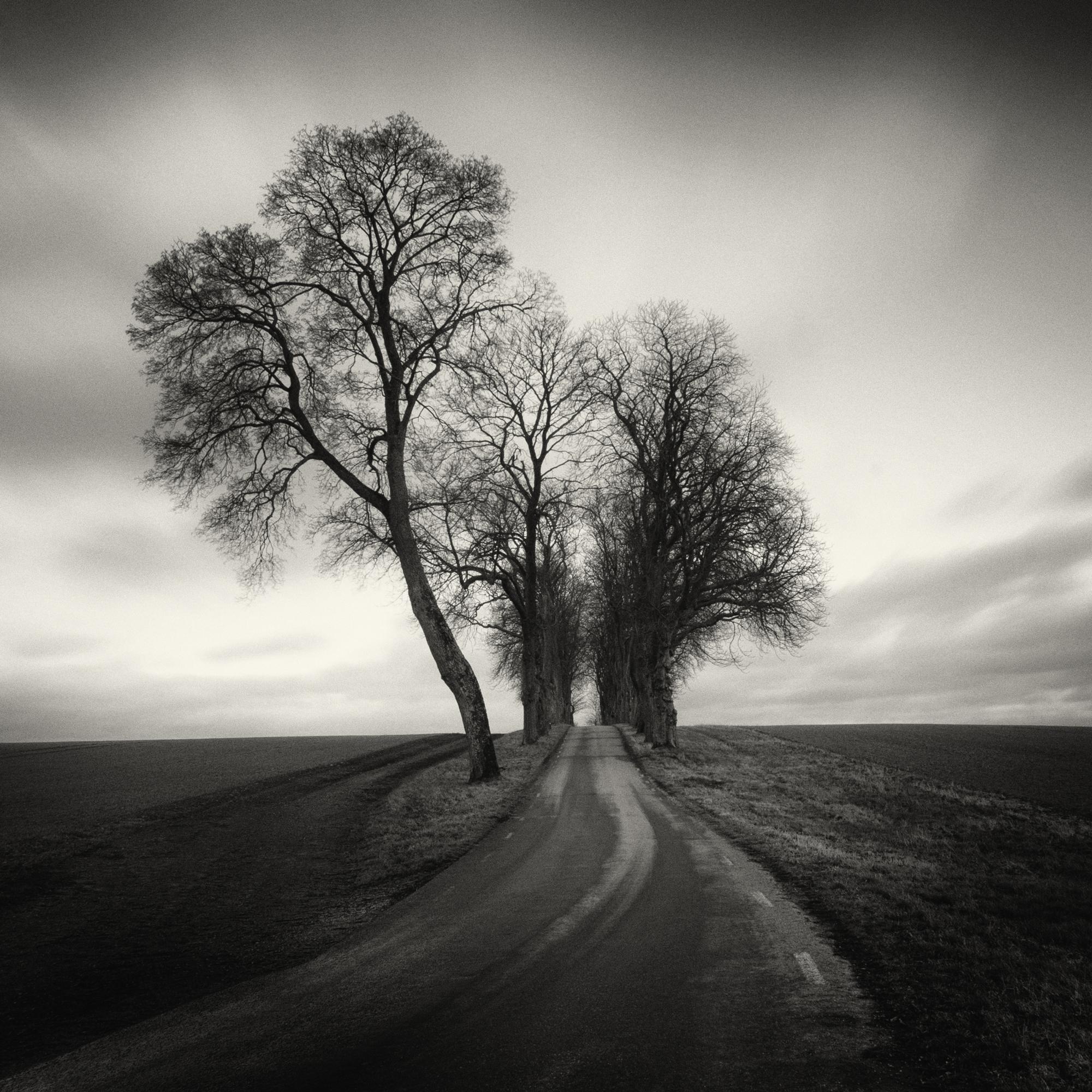 Hình ảnh con đường trắng đen