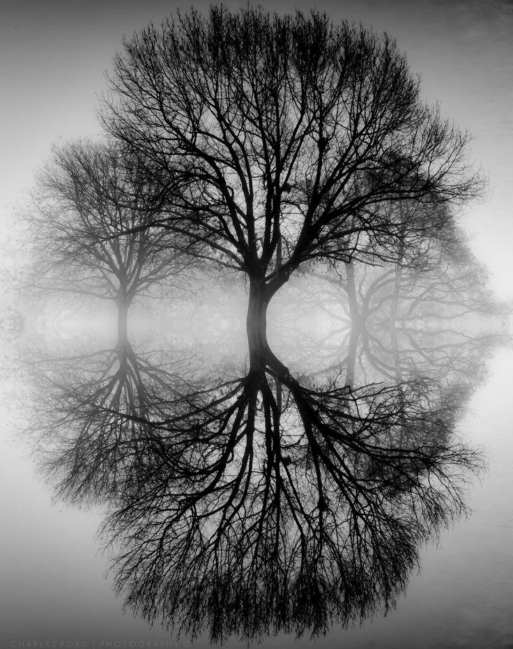 Hình ảnh đen trắng nghệ thuật và độc đáo