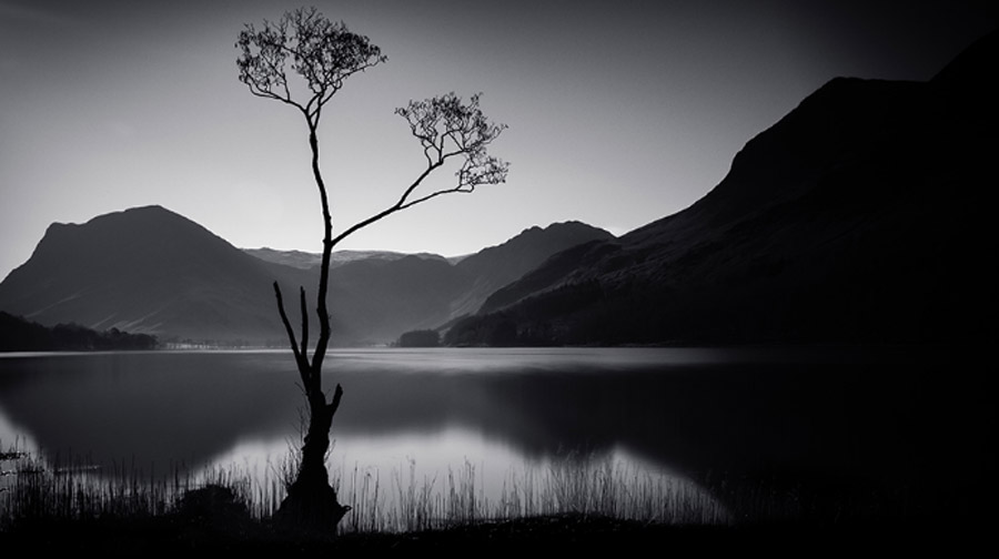 Hình ảnh thiên nhiên trắng đen