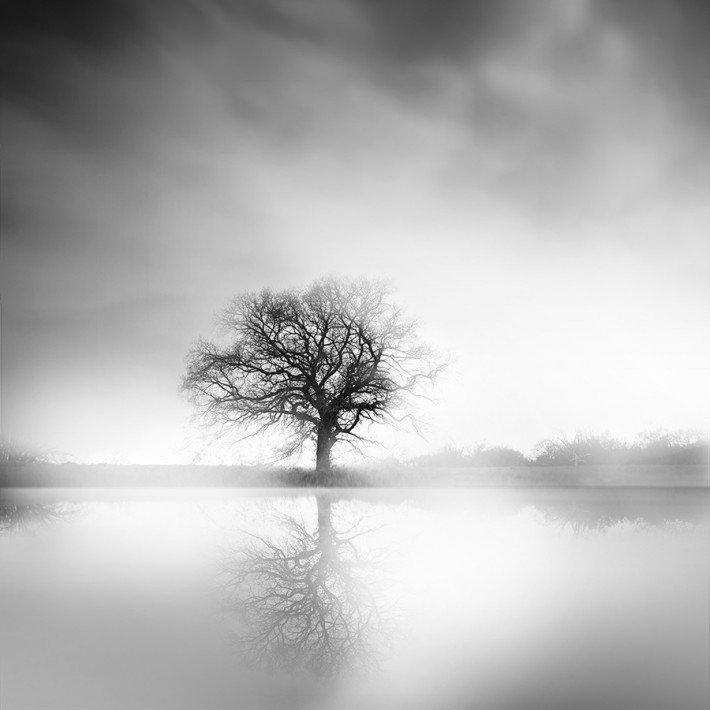 Hình ảnh trắng đen buồn