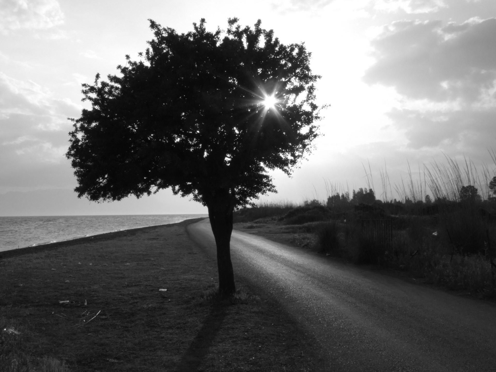 Hình nền trắng đen buồn, cô đơn