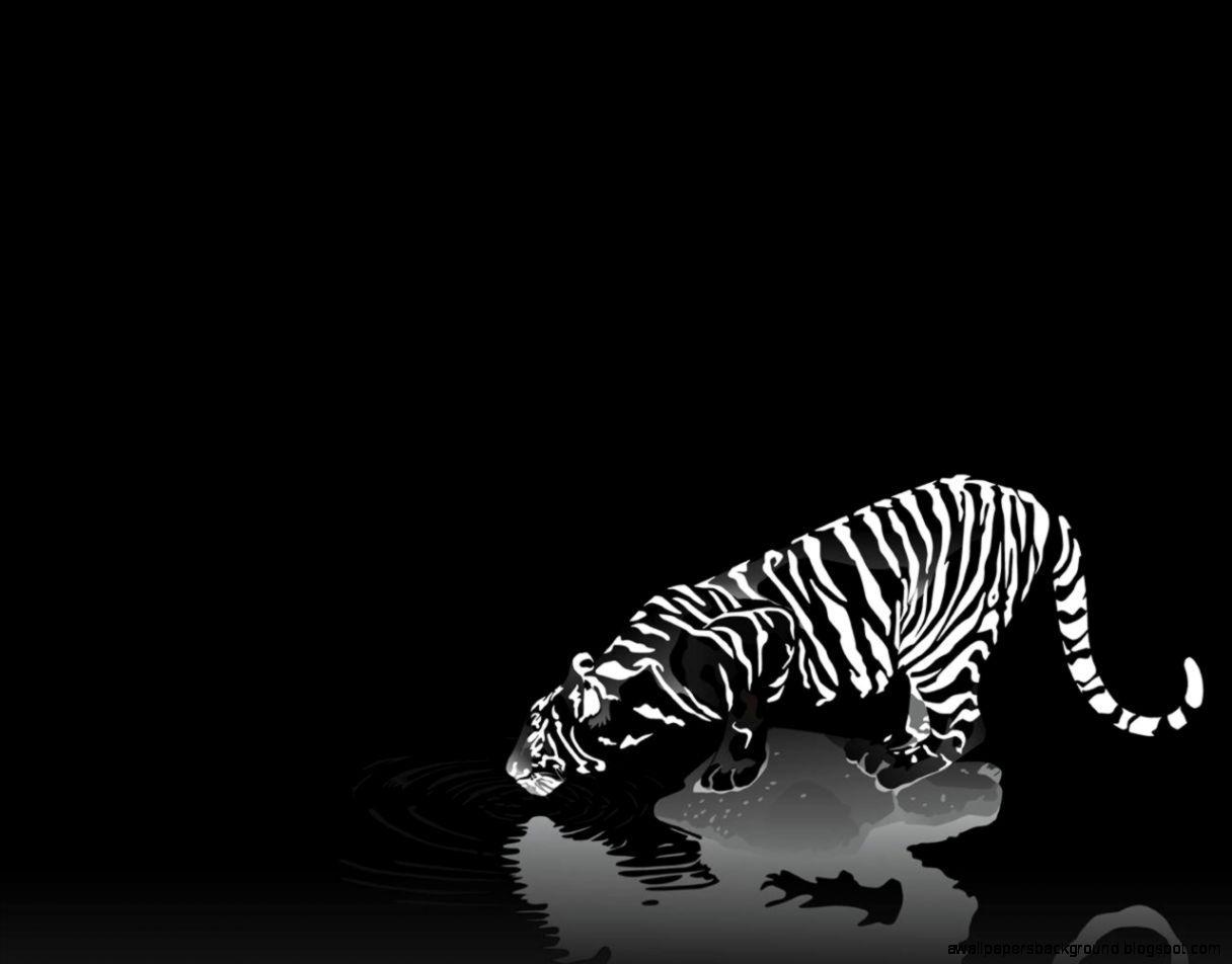Hình nền trắng đen đẹp và độc đáo