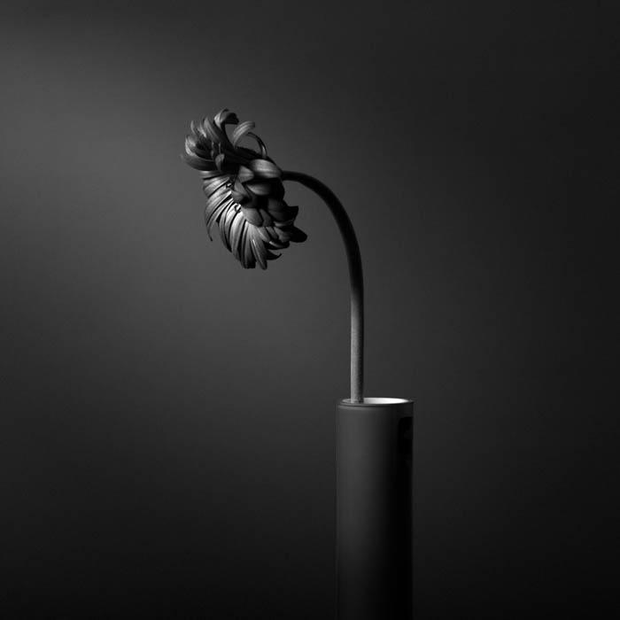 Những ảnh đen trắng nghệ thuật đẹp