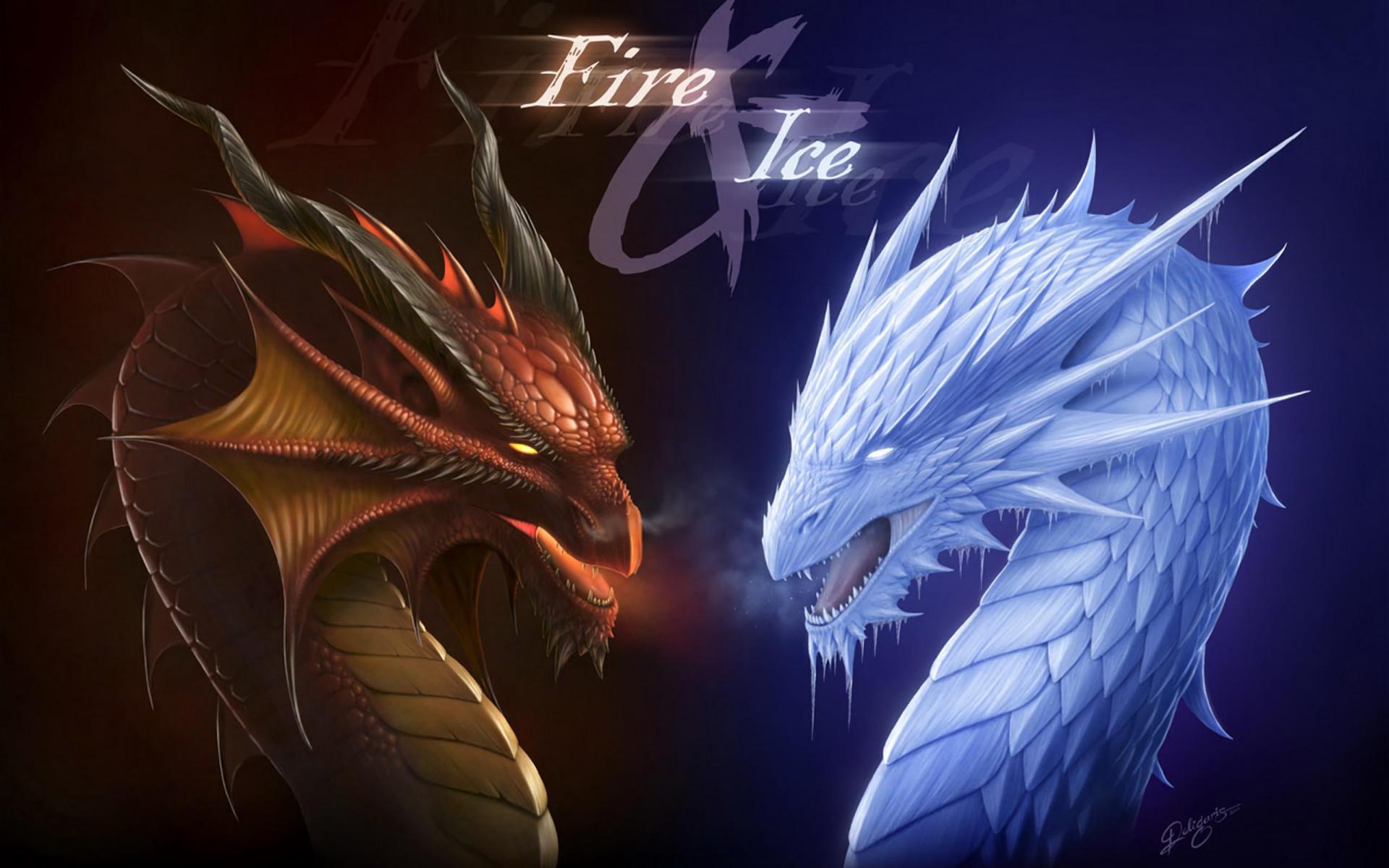 Hình nền rồng đối lập