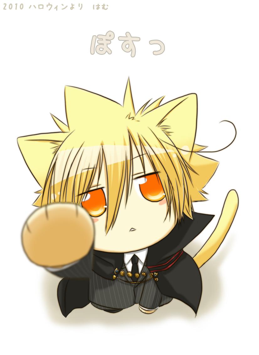 Ảnh anime cụ Giotto khi là mèo
