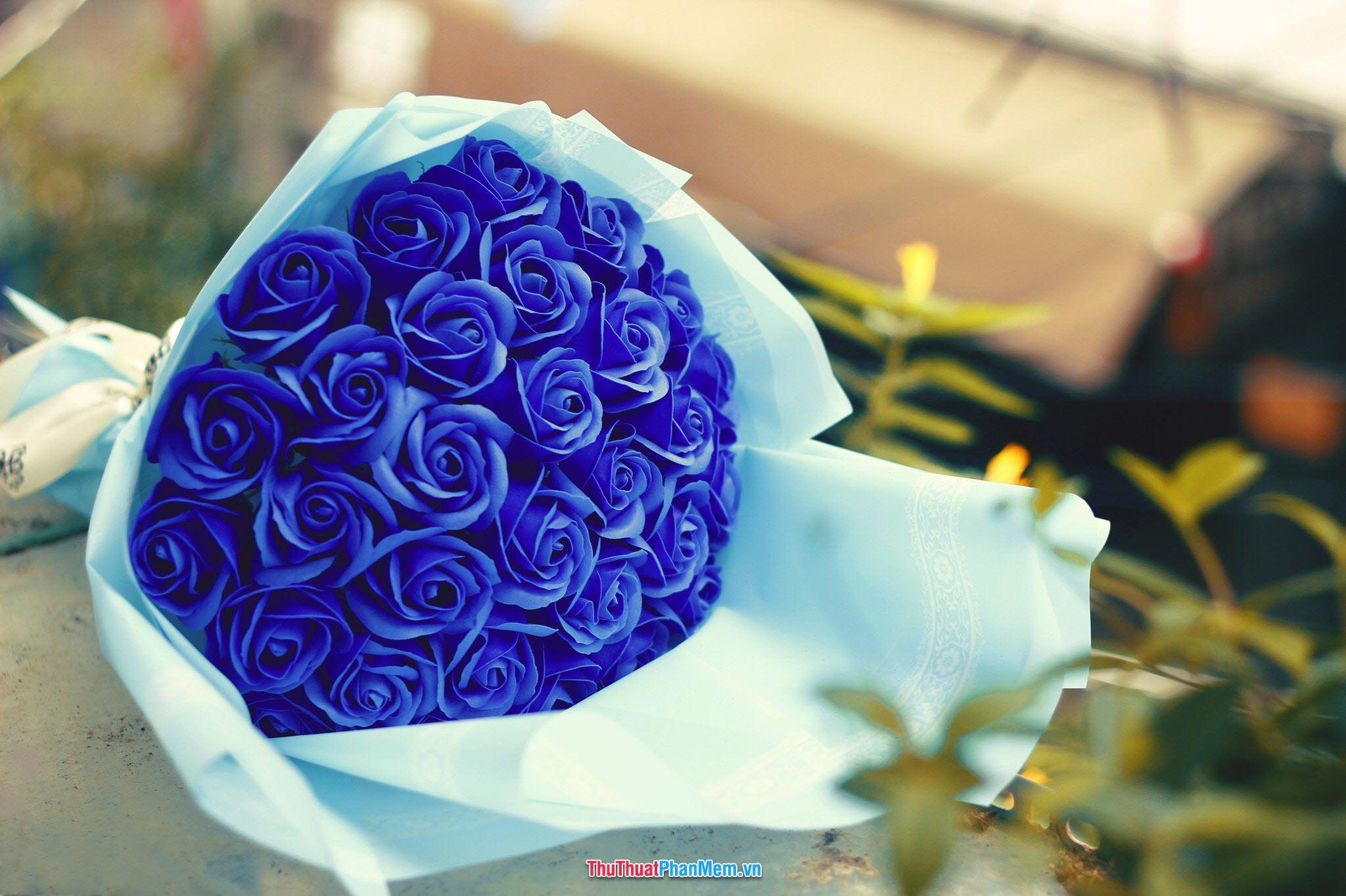 Hoa hồng xanh dành tặng mẹ nhân ngày mùng 8 tháng 3