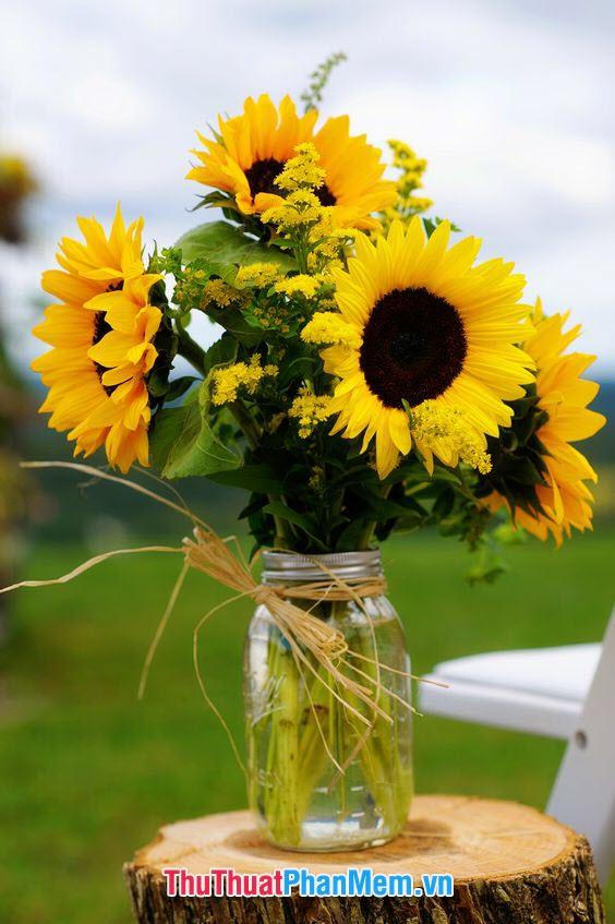 Lọ hoa hướng dương dành tặng mẹ bạn nhân ngày mùng 8 tháng 3 nhất định sẽ làm cho bà rất vui