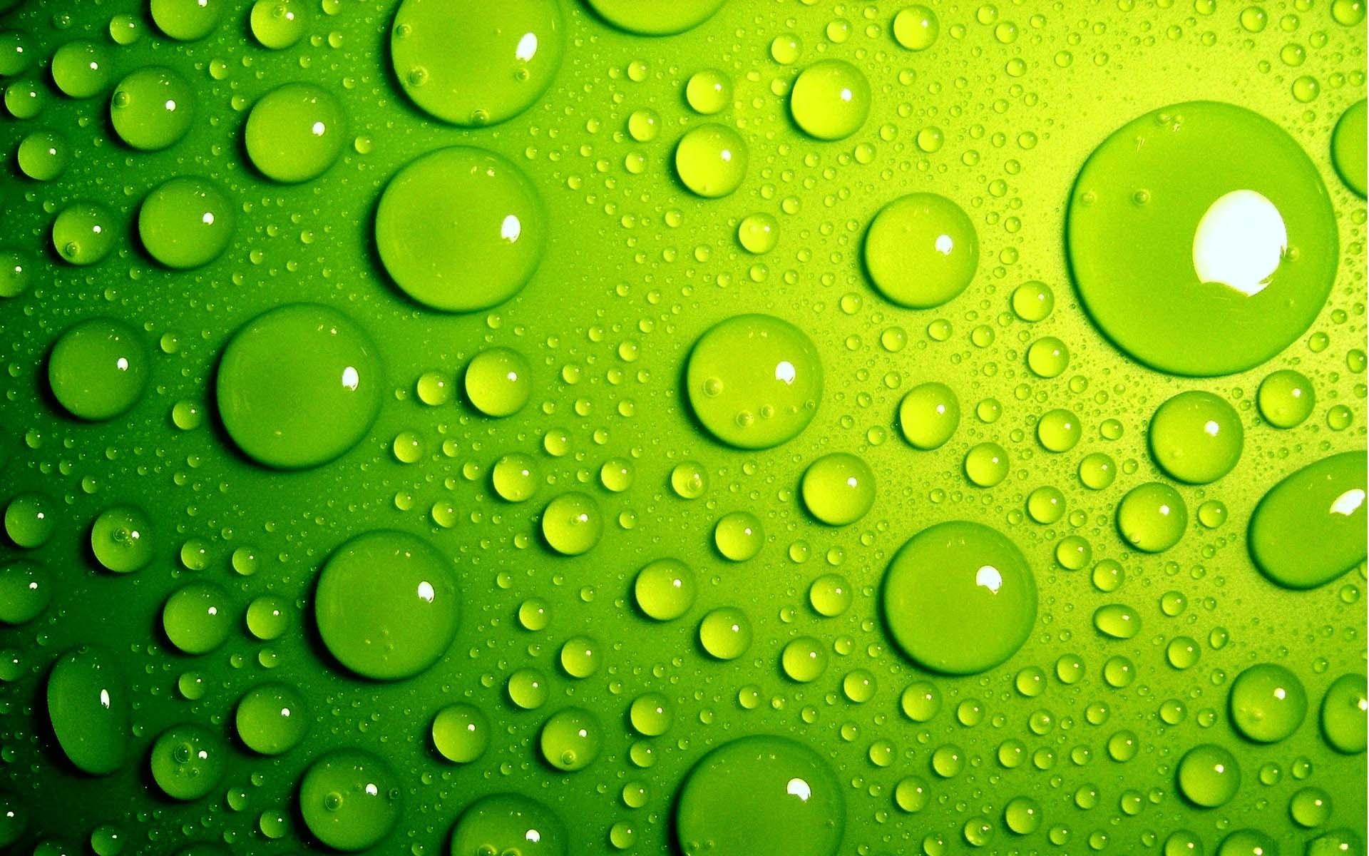 Nền power point màu xanh lá giọt nước