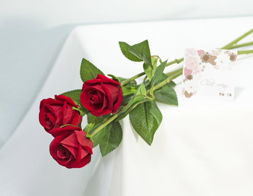 Hình ảnh ba bông hồng đỏ đẹp