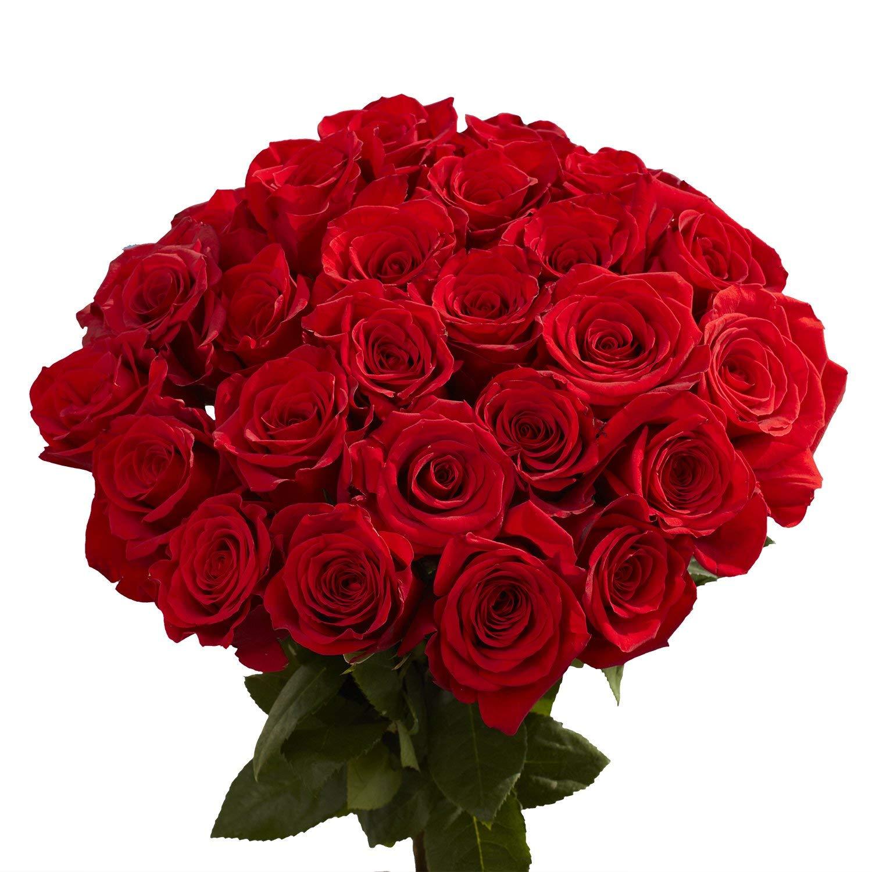 Hình ảnh bó hoa Hồng đỏ tròn cực đẹp