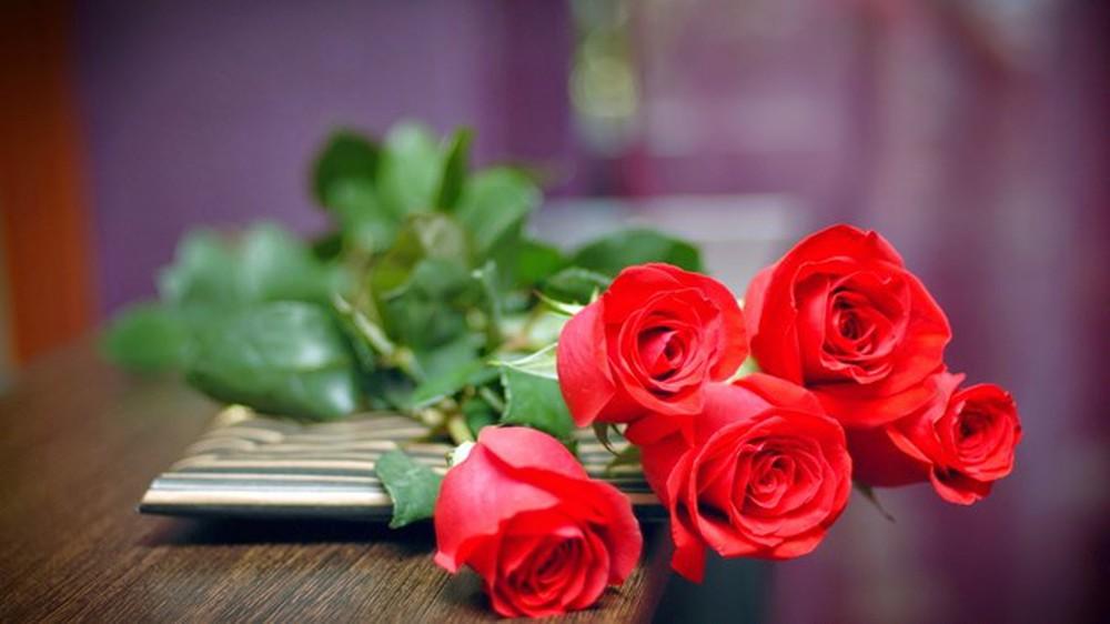 Hình ảnh các bông hồng đỏ