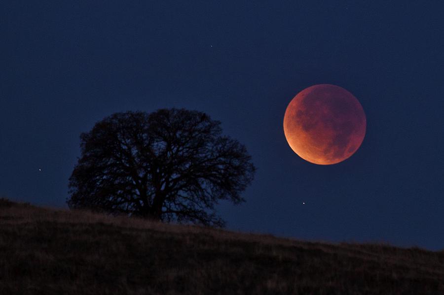 Hình ảnh mặt trăng đẹp nhất