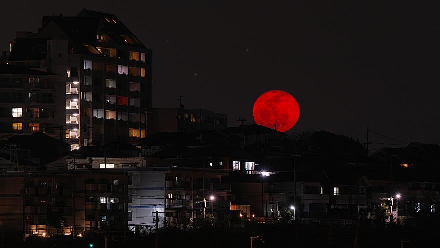 Hình ảnh trăng máu đẹp