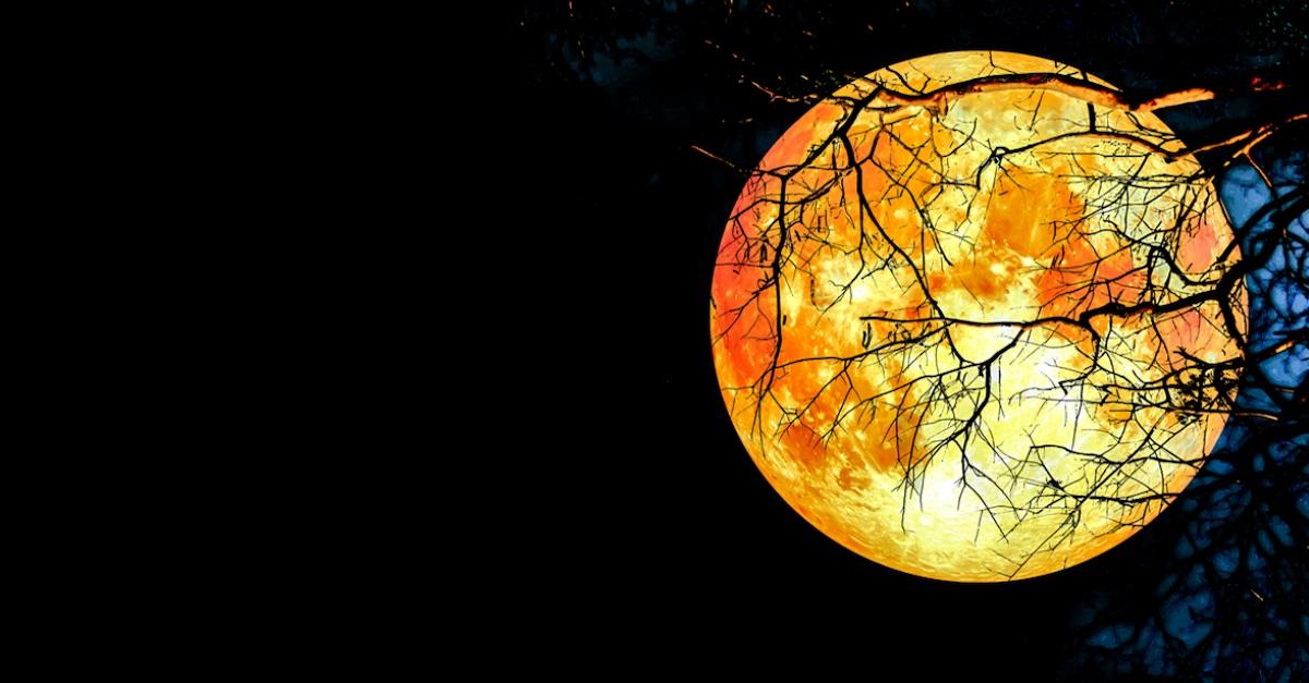 Hình đẹp về trăng máu