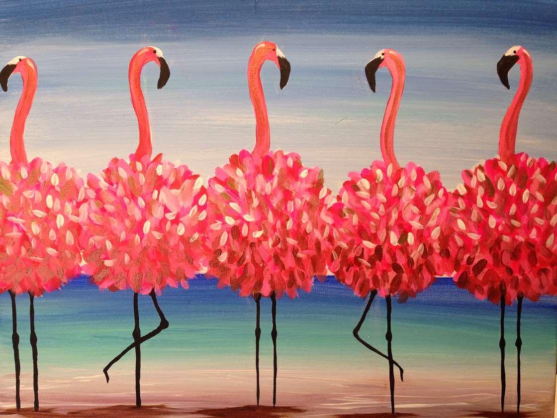 Hình ảnh tuyệt đẹp của những chú chim hồng hạc trên biển