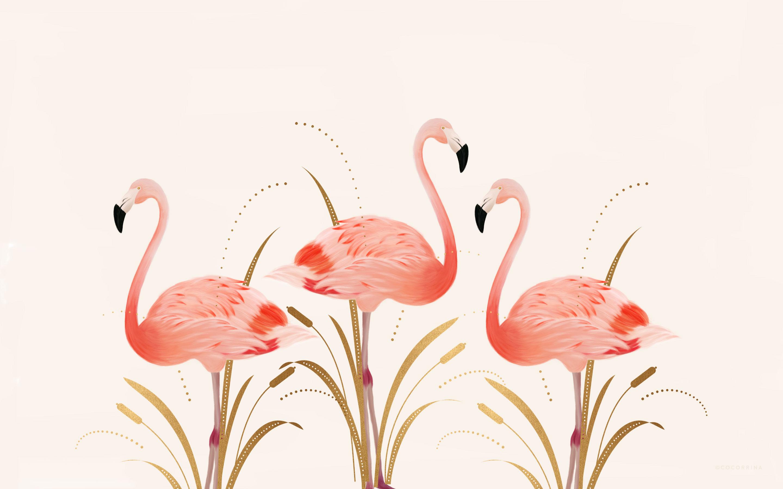 Tranh vẽ về chim hồng hạc đẹp nhẩt