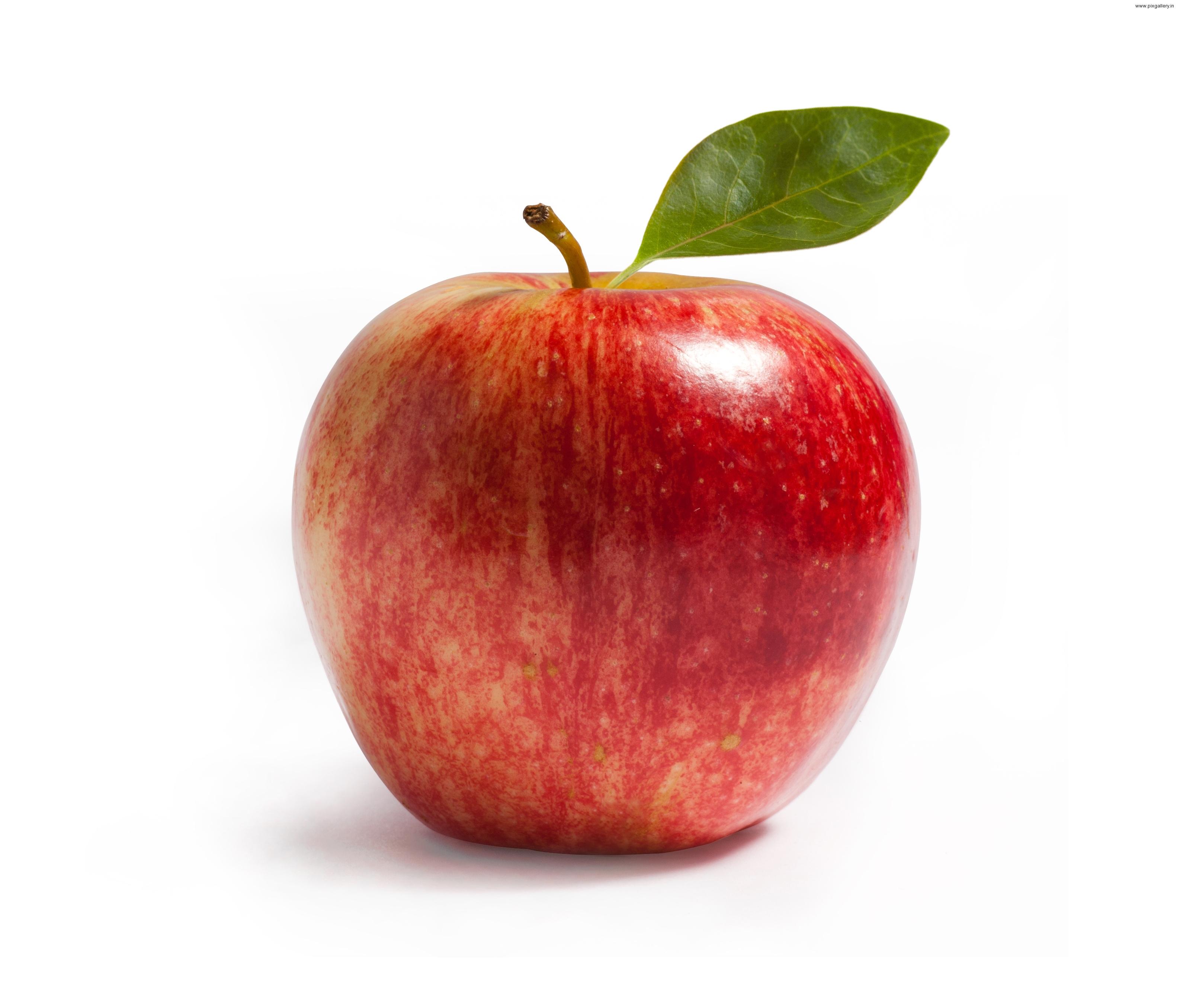 Quả táo đỏ cực đẹp