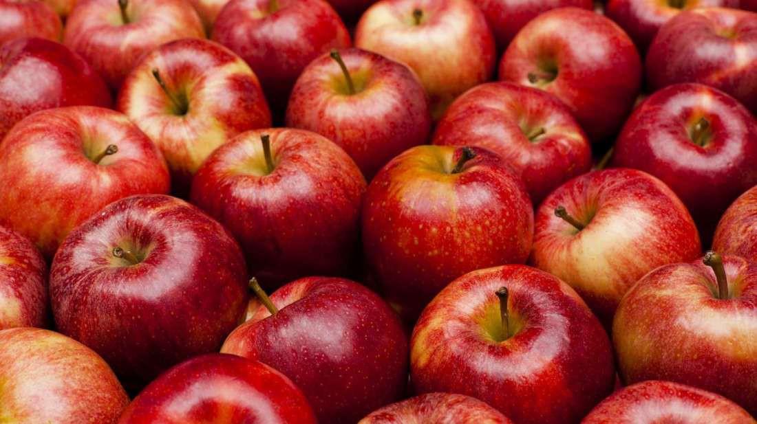 Tổng hợp hình ảnh quả táo đẹp nhất