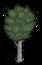 cây bulô