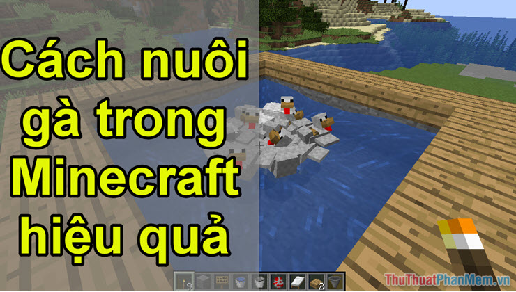 Cách nuôi gà trong Minecraft hiệu quả