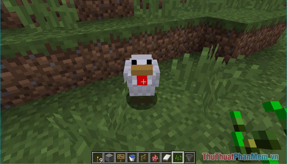 Hướng dẫn nuôi gà trong Minecraft (10)