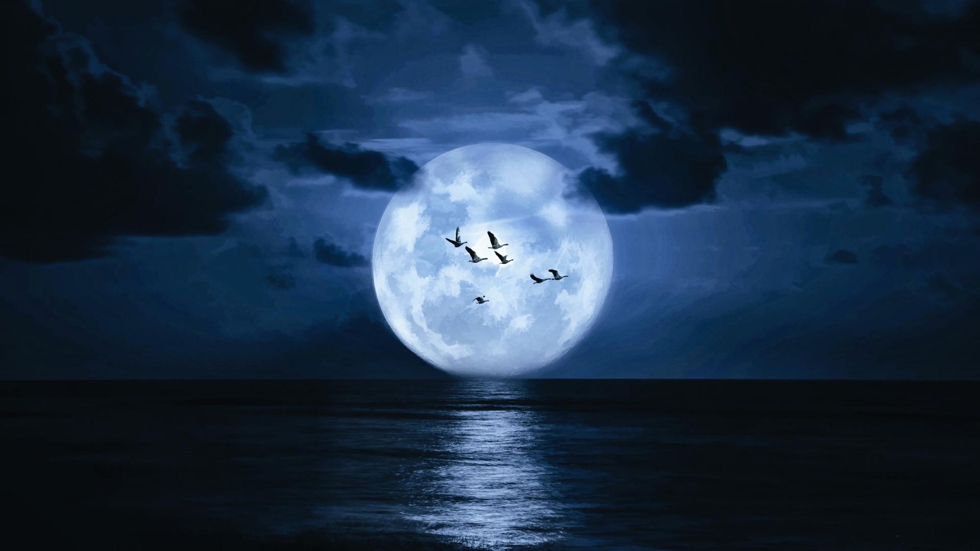 Ảnh đẹp mặt trăng trên biển