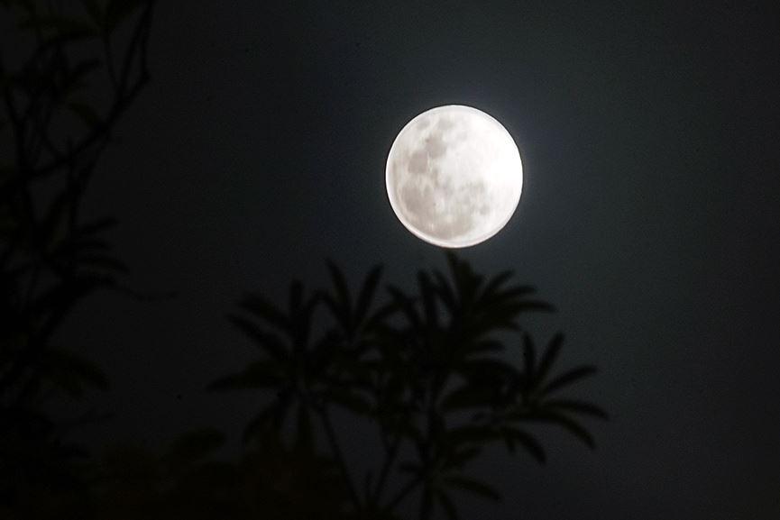 Hình ảnh đêm trăng đẹp