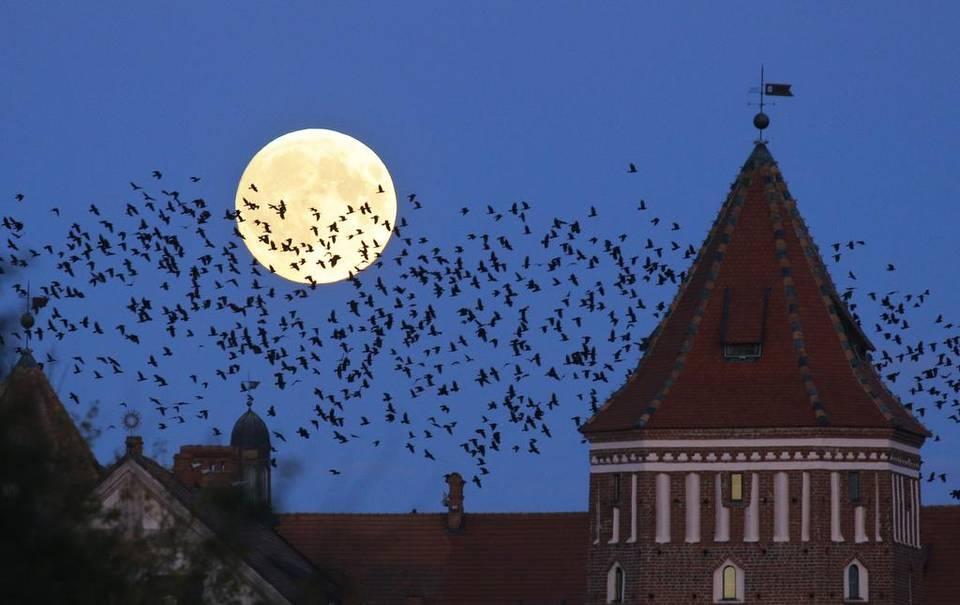 Hinh ảnh mặt trăng trên bầu trời