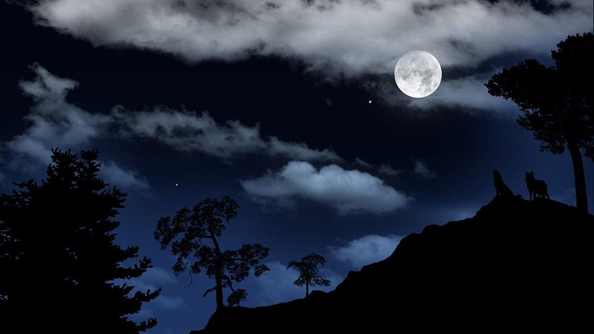 Những ảnh mặt trăng đẹp nhất