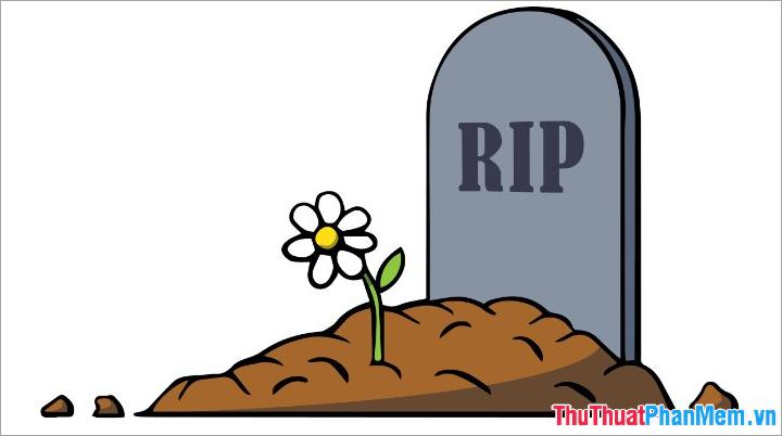 Định nghĩa RIP