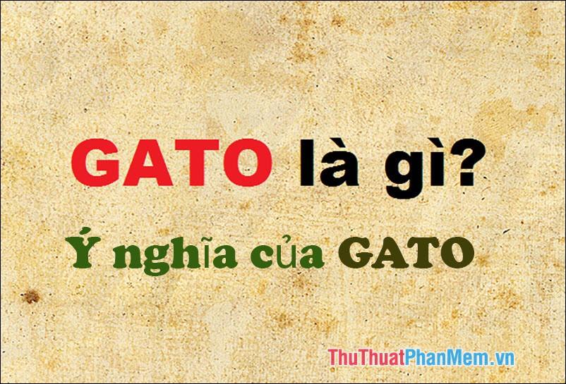 GATO là gì? Ý nghĩa của từ GATO