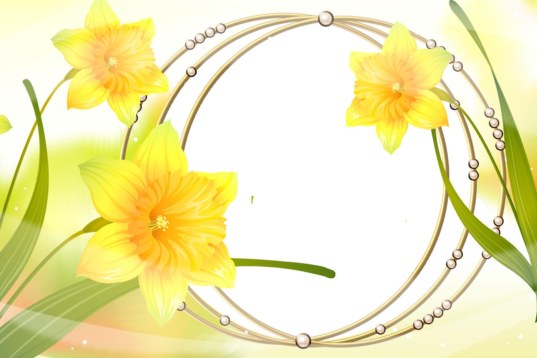 Khung ảnh hoa đẹp nhất