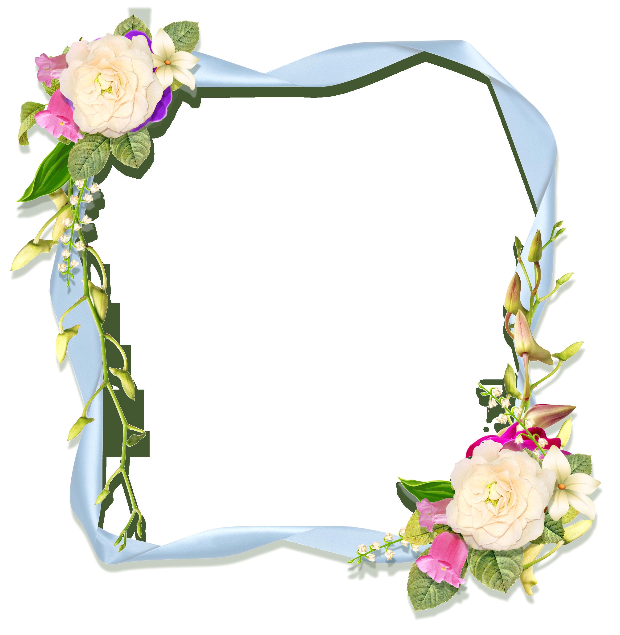 Khung ảnh hoa đẹp