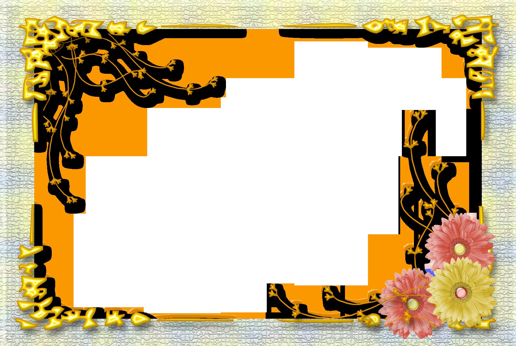 Khung ảnh hoa nơ đẹp