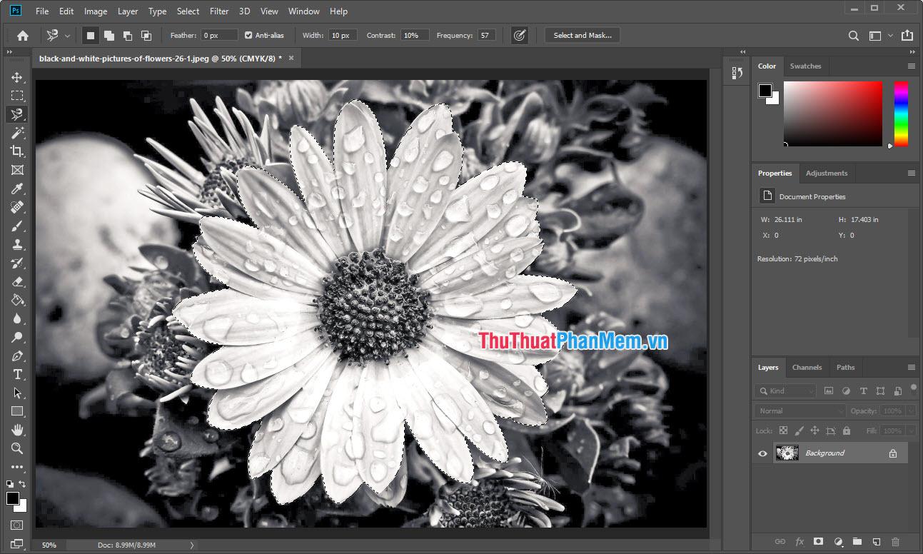 Mở hình ảnh đen trắng cần chỉnh sửa vào trong phần mềm Photoshop