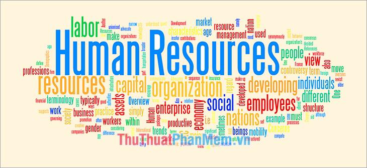 Các vị trí trong ngành HR