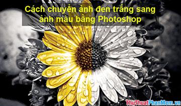 Cách chuyển ảnh đen trắng sang ảnh màu bằng Photoshop