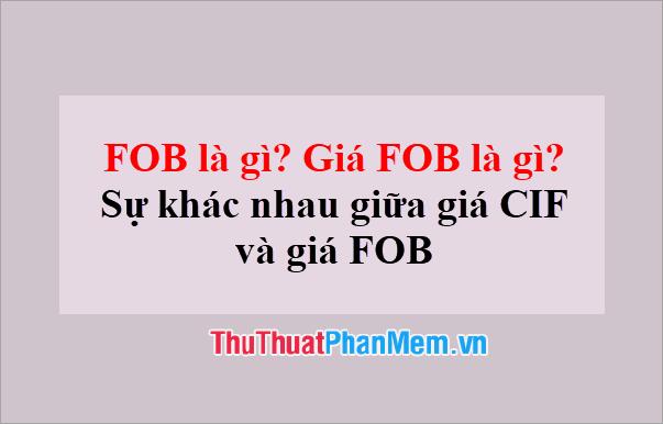 FOB là gì? Giá FOB là gì? Sự khác nhau giữa giá CIF và giá FOB